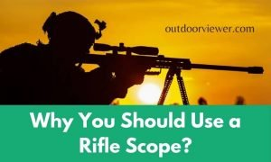 Why You Should Use a Rifle Scope